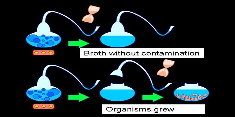 Pasteur's Swan Flask Expieriment Diagram-Wikimedia
