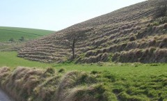 Ancient Farming Terraces, England Wikimedia