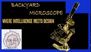 Mark Armitage: Backyard Microscope